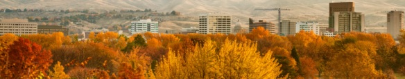 What distinct features of Boise are at risk as the city progresses?