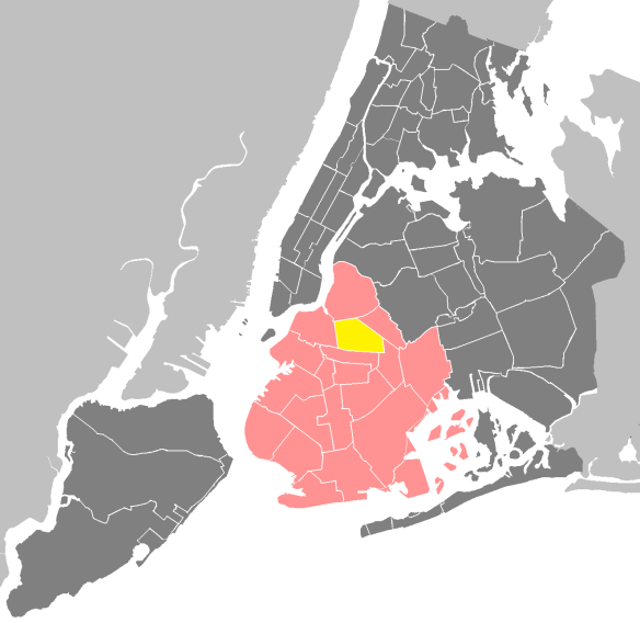 The Big Apple: New York City, represented in dark grey; Brooklyn represented in pink; and Bedford-Stuyvesant in yellow. Credit M.Minderhoud.